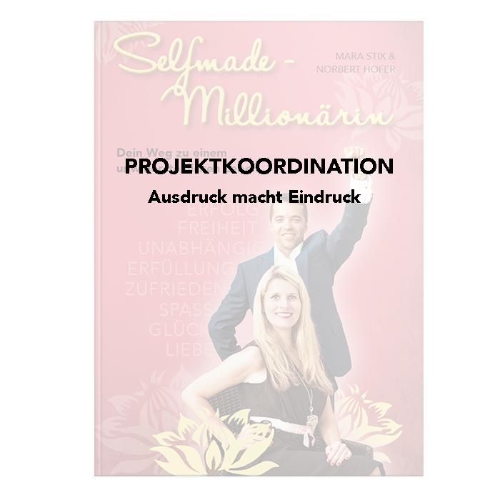 Selfmade Millionaerin Slide2